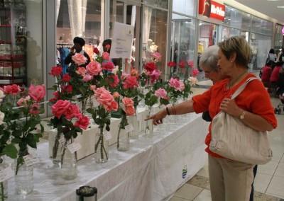 Mangaung Rose Festival 2012 03