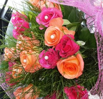 Mangaung Rose Festival 2014 00