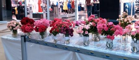 Mangaung Rose Festival 2014 06